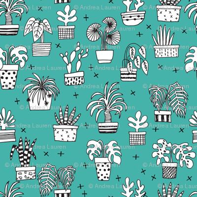 houseplants // teal plants plant cactus cacti hand drawn illustration