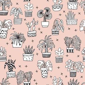 houseplants // palm palm prints cactus cacti plants plant houseplant hand drawn illustration