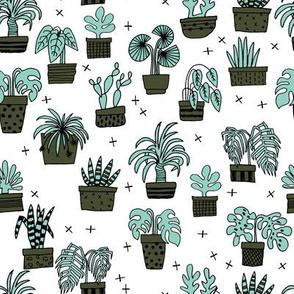 houseplants // plants plant cactus cacti plant hand drawn illustration