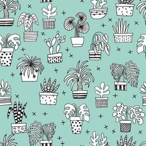 houseplants // plants palm palm print plants cactus cacti mint plants palms