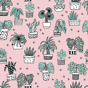 houseplants // plants palm palm print cactus cacti pink light pink palms