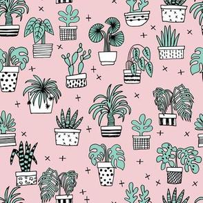 houseplants // plants palm palm print cactus cacti pink light pink palms