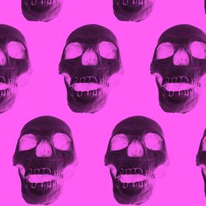 Skulls on Pink