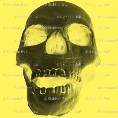 Skull on Yellow