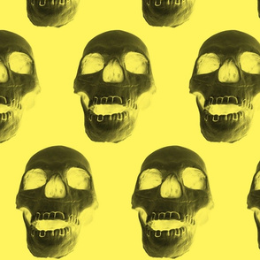 Skull on Yellow