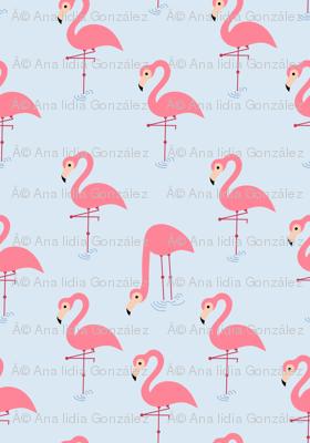 pink flamingos (1)