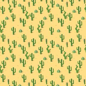 cactaceas desert