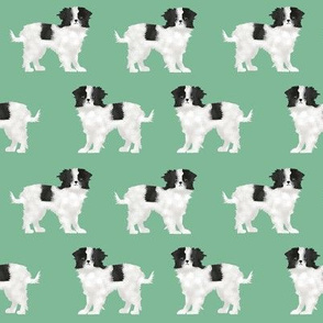 japanese chin dog pet mint dogs dog pets cute pet dog fabric