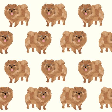 pomeranian cute dog pet dogs pom dog pomeranians dog fabric  fabric by petfriendly on Spoonflower - custom fabric