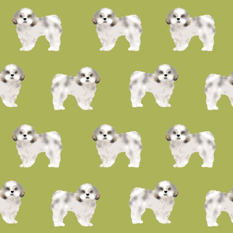 Rshih_tzu_lime_shop_preview