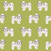 Rshih_tzu_lime_shop_thumb