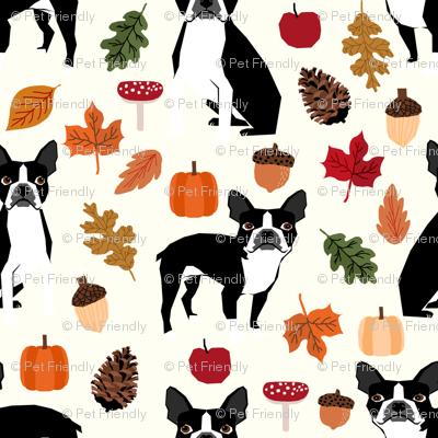 Boston Terrier Autumn Dogs Dog Pet Leaves Pumpkins
