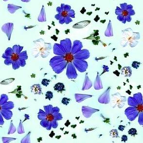My Garden   Blue vibrant