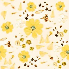 My Garden   Yellow