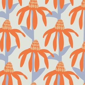 Coneflowers in orange