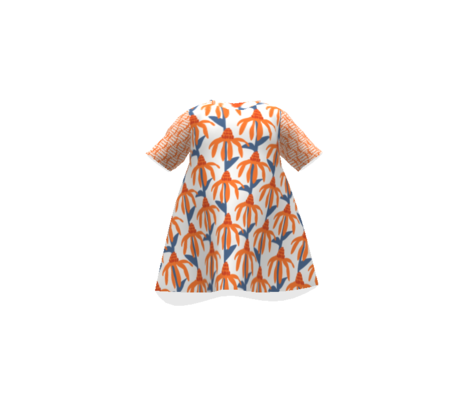Coneflower orange and slate blue