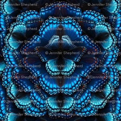 Blue Butterfly Mandala