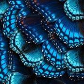 Rrbluebutterflies1_symmetrical2_shop_thumb