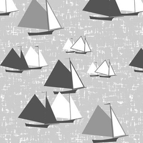Racing gaff-rigged skiffs, grayscale