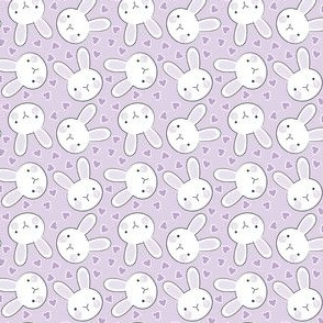 tiny bunny faces on purple