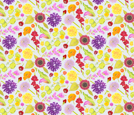 SummerSketchbookChintz fabric by blairfully_made on Spoonflower - custom fabric