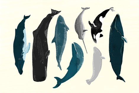 Rtea_towel_whales_shop_preview