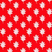 Old Oak - Bright True Red