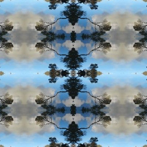 Reflections_Pattern