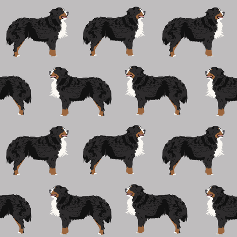 bernese mountain dog fabric bernese mountain dog dog breed design dog breed fabric dogs cute dog design best dog pet dog fabric fabric by petfriendly on Spoonflower - custom fabric