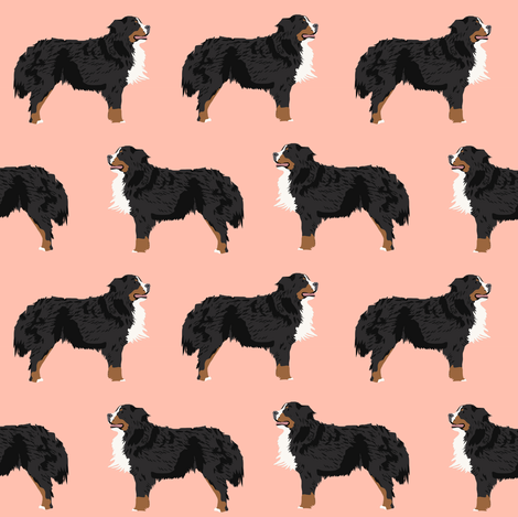 Download Bernese Mountain Dog Chubby Adorable Dog - rbmd_peach_shop_preview  Best Photo Reference_489979  .png