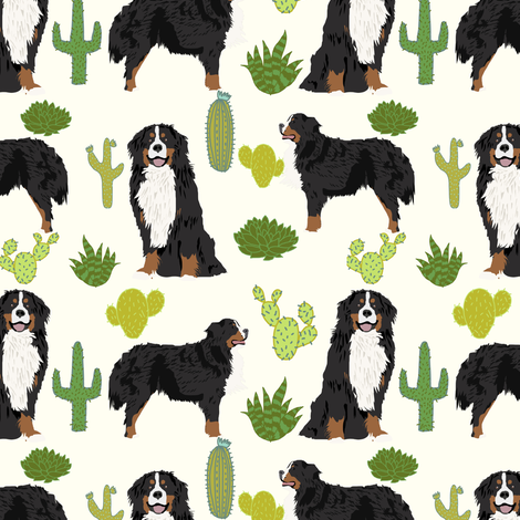 Good Bernese Mountain Dog Chubby Adorable Dog - rbmd_cactus_cream_shop_preview  Snapshot_676817  .png