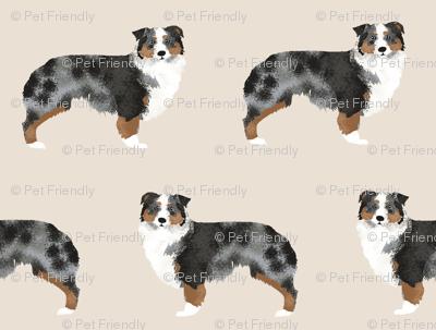 aussie dog australian shepherds dog shepherds aussie tan dog fabric