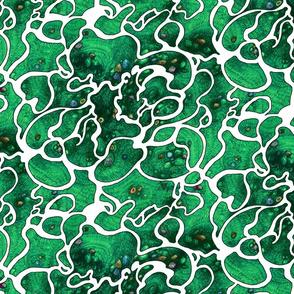Green Sea Rockpool