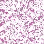 Bodacious Ferns White
