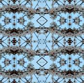 Blossom_Geometry