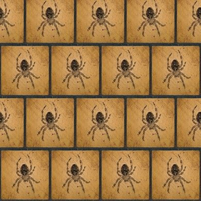 Female Barn Spider Silhouette Blocks