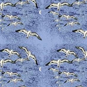 seagulls__moon_lt_blue