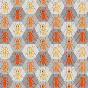05675542 : ant hex : scary fire ants