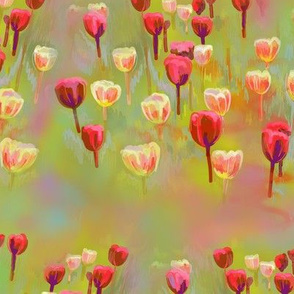 Tulips - red and yellow-green