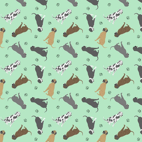 Tiny Great Danes - green