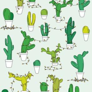 Christmas Cacti