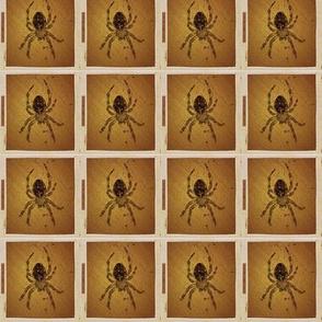 Female Barn Spider Silhouette Blocks - Vers. 3