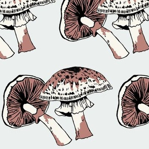 Mushrooms Grey