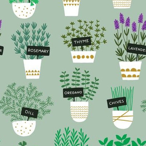 Herbs in pots (light)
