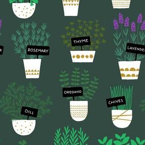 Herbs in pots (dark)
