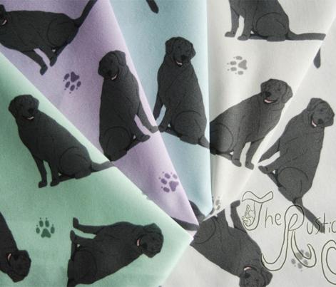 Tiny Black Labrador Retrievers - gray