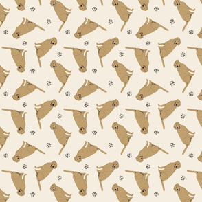 Tiny Yellow Labrador Retrievers - tan