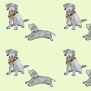 Lab_Puppies_Lime Green_Mono_Print
