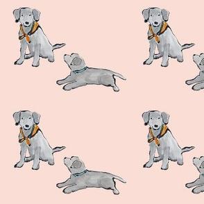 Lab_Puppies_Peach_Mono_Print
