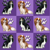 cavalier_spaniels_in_purple2